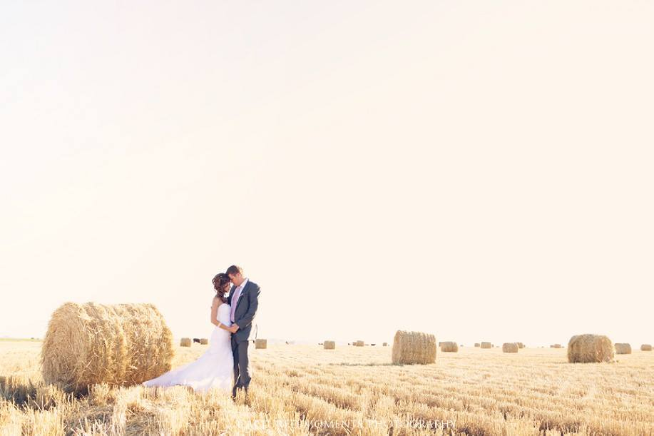 the-willows-free-state-wedding-venue-5
