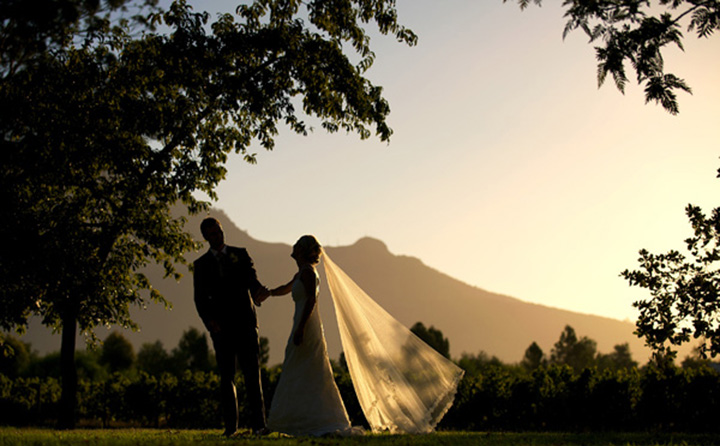 Allee-Bleue-south-africa-wedding-venue-03