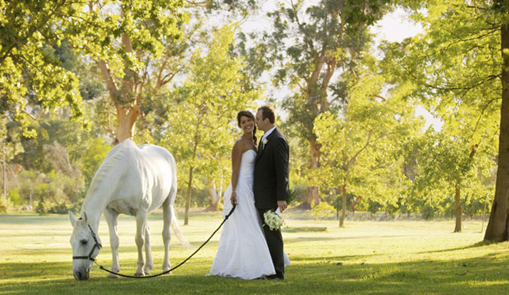 Allee-Bleue-south-africa-wedding-venue-14