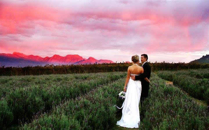 edenheim-wedding-venue-western-cape-1