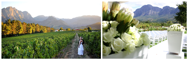 franschhoek-wedding-showcase-4