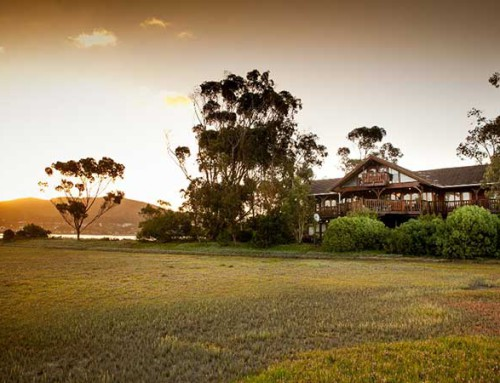Oyster Creek Lodge in Knysna