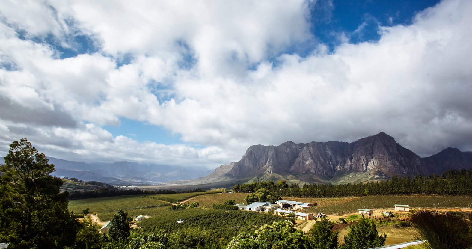 The Western Cape A Dream Wedding Destination