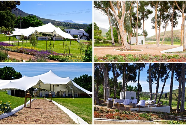 beaumont-family-wines-wedding-venue-overberg-western-cape-3