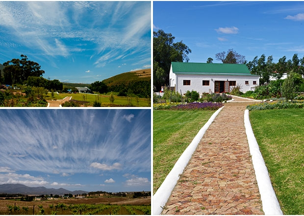 beaumont-family-wines-wedding-venue-overberg-western-cape-5