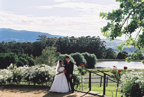 diemersfontein-winelands-wedding-venue-western-cape-9