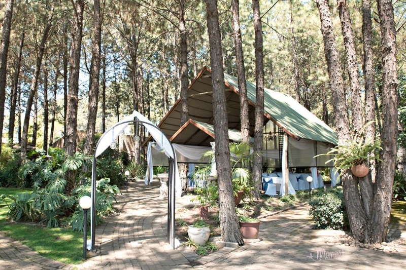 The Forest walk outdoor forest wedding venue