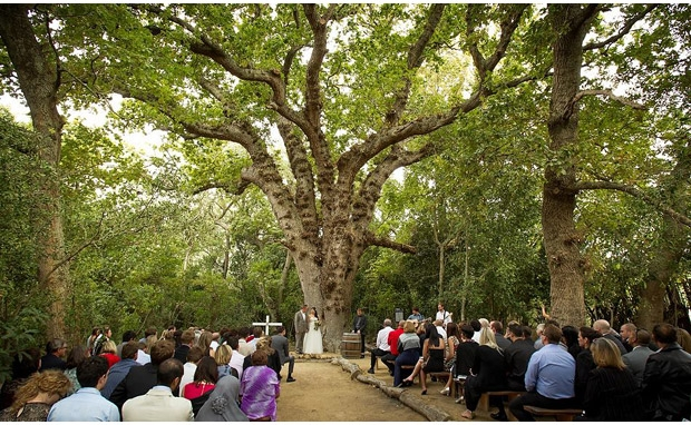 15454_de-uijlenes-forest-barn-wedding-venue-western-cape-7