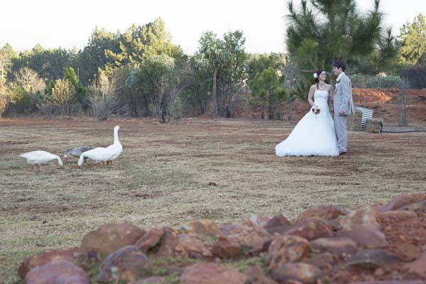 thulani-farm-country-venue-gauteng-11
