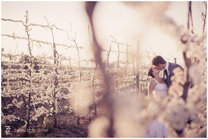 brenaissance-wine-estate-wedding-venue-western-cape-1