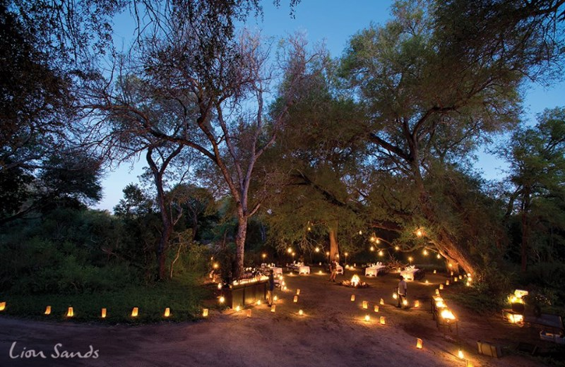 lion-sands-game-reserve-bush-wedding-venue-south-africa-5