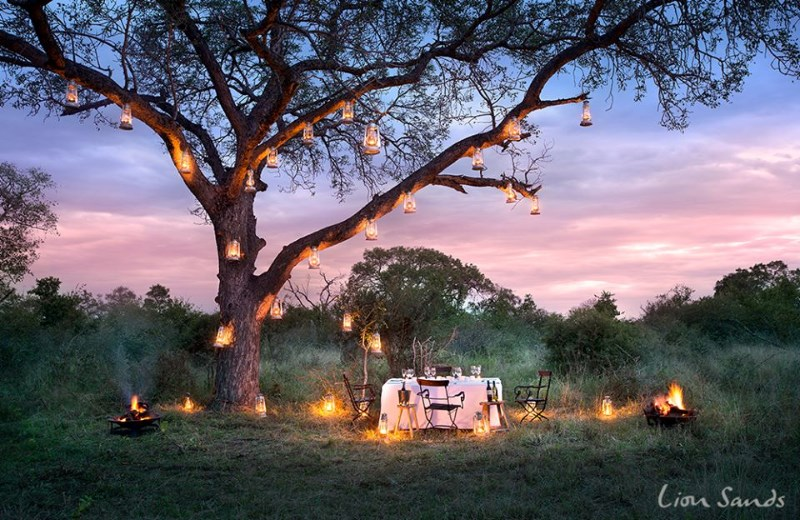 lion-sands-game-reserve-bush-wedding-venue-south-africa-6