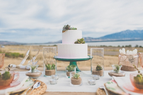 Water-wise Wedding Succulents