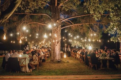 outdoor-forest-wedding-ideas-south-africa